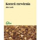 Zioła Korzeń Rzewienia x 50 g.